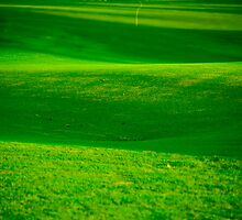 Fairway 16 by phil decocco