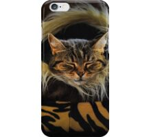 If you want to learn how to relax - study a cat! iPhone Case/Skin