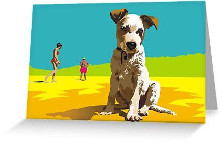 Daisy on Stradbroke Island by Matt Mawson