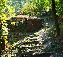 Large stone steps surrounded by trees on the path in the park by vladromensky