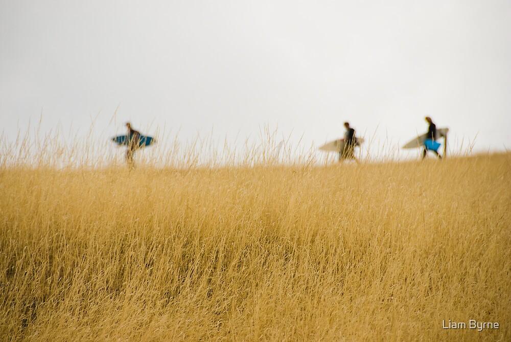 Always Searching - South Arm, Tasmania by Liam Byrne