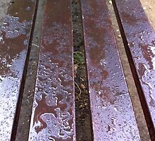 Wet wooden bench with drops by vladromensky