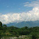 Palampur Kangra Valley by RajeevKashyap