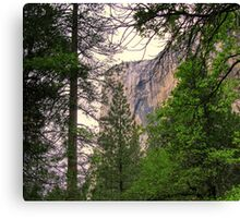 el capitan 2 Canvas Print