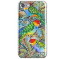 Rainbow parrots phone covers, leggings , mugs etc.  iPhone Case/Skin