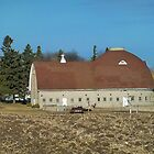 Spring Round Barn by Diane Trummer Sullivan