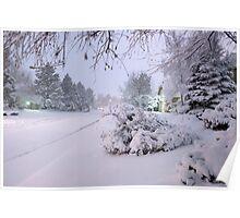 Nightime Snowfall Poster