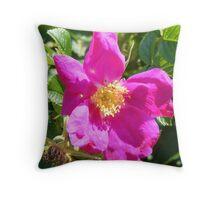 Wild Rose,  Rye Beach, NH Throw Pillow