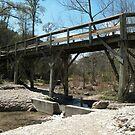 Chalk Ridge Falls Foot Bridge by linmarie
