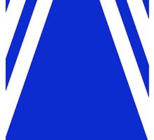 Blue and White Striped Sporty Design by Melissa Park