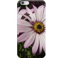 Double Daisy iPhone Case/Skin