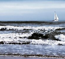 Leaving Safe Harbour. Blyth. by Sue Smith