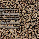 winter wood by yvesrossetti