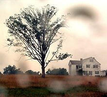 Old Estate in the Rain by Lyccid