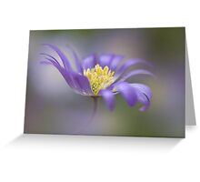 A sprinkling of Spring Greeting Card