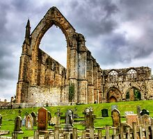 Bolton Abbey. Yorkshire. by Sue Smith