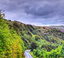 The Road to Settle. UK. by Sue Smith