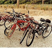 Vintage Bicycles- at the Beach by Alexander Greene