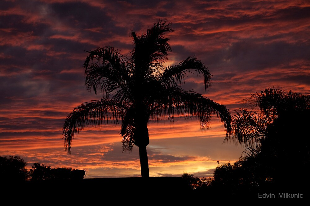 Sunset over St. Petersburg, Florida by Edvin  Milkunic