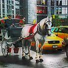 Alternate Transportation by Barbara Manis