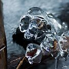 Ice Fist by Evogance