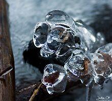 Ice Fist by Evogance