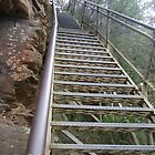 Stairways of the Blue Mountains-2 by DianneLac