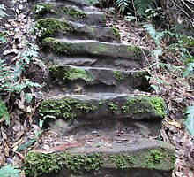 Stairways of the Blue Mountains-3 by DianneLac