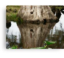 Tree Reflection Canvas Print