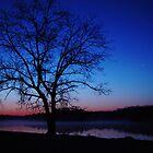 Oak Tree Sunrise 2 by Christina Spiegeland