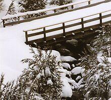 Snowfall at Perisher by natphoto