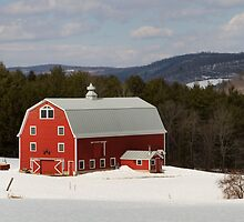 Bright Red Barn in Winter by Mark Van Scyoc