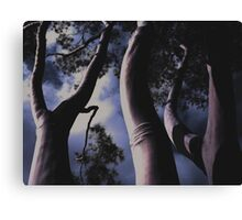'Land Of The Giants' - Fitzroy - Melbourne Australia - 2007 Canvas Print