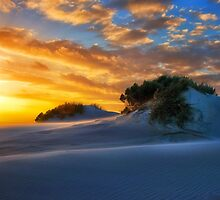 Dune Sunset by Leanne Robson