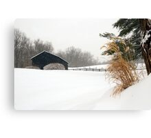 White Out in Rabbit Hash, KY Canvas Print
