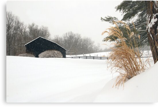 White Out in Rabbit Hash, KY by Jeanne Sheridan