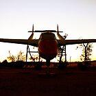 Sunset Flight - Western Australia by Good-Thanks