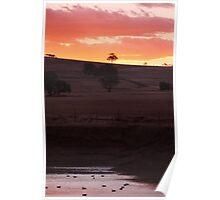 Dam Sunset - Western Australia Poster
