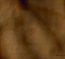 Transparent Words © by Vicki Ferrari