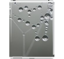 Web Drops iPad Case/Skin