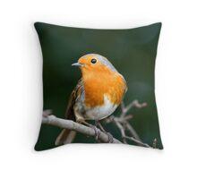 Stunning Robin Throw Pillow