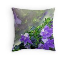 Reflections on a Dull Day Throw Pillow
