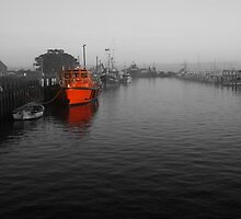 Pilot Boat, Queenscliff by Lisa  Kenny
