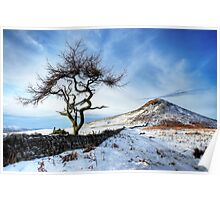 Winter at Roseberry Topping, North Yorkshire Poster