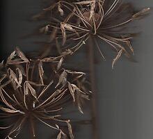 skins4 by strykermeyer