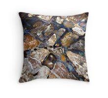 Mosaic Glaze 5 (detail) Carcoar Throw Pillow