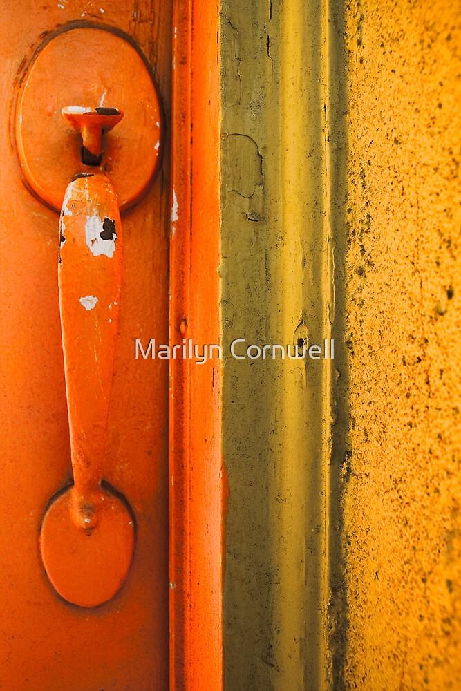Door on The Danforth by Marilyn Cornwell