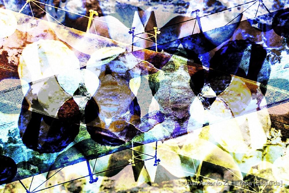 DSCN3987 _GIMP by Juan Antonio Zamarripa