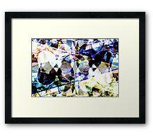 DSCN3987 _GIMP Framed Print