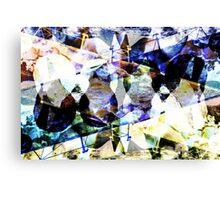 DSCN3987 _GIMP Canvas Print